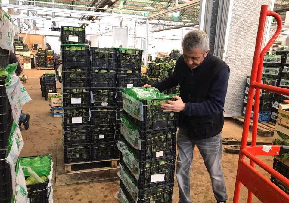 La Cooperativa Agrícola del Prat garanteix el subministrament de producte fresc dels pagesos del Parc Agrari i fa una crida a la responsabilitat de la ciutadania